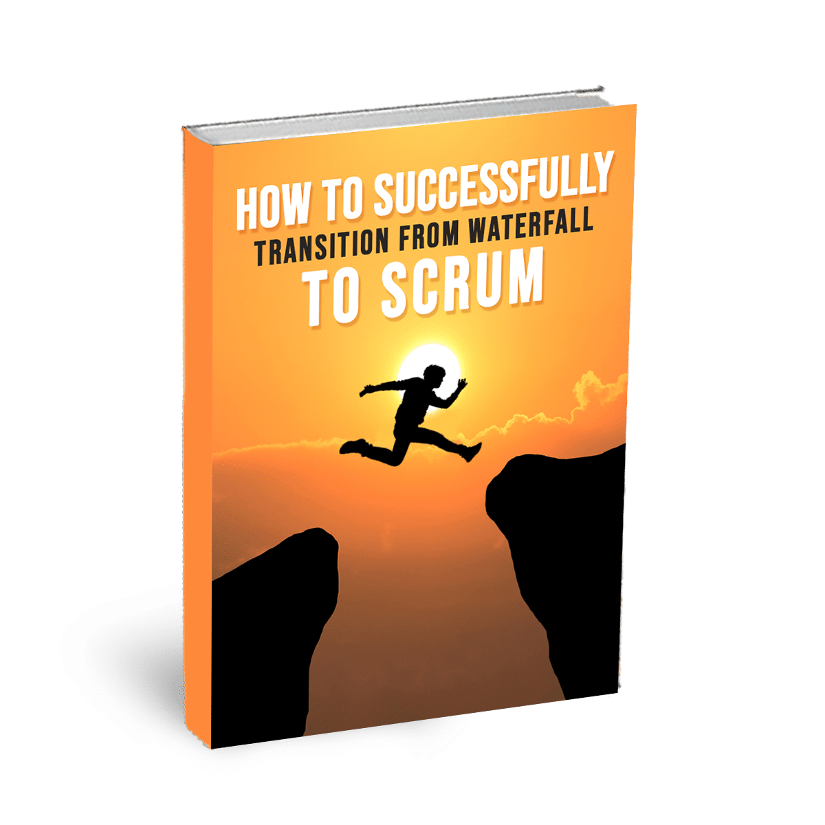 agile coach ebook
