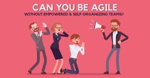 Can You Be Agile Without Empowered & Self-Organizing Teams?